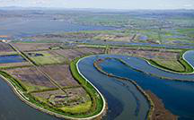 San Francisco Bay-Delta estuary